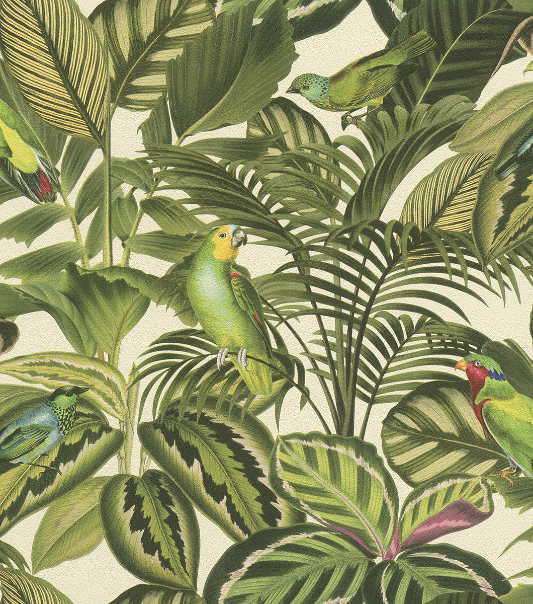 Ταπετσαρία τοίχου Rasch Freundin Home Collection II 439533 Τροπικά φύλλα με εξωτικά πουλιά 10,05x0,53