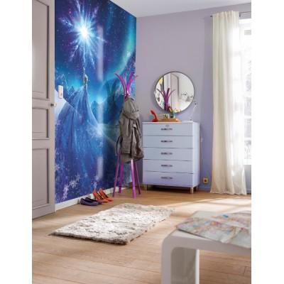 Φωτοταπετσαρία τοίχου παιδική Frozen DISNEY 184x254cm