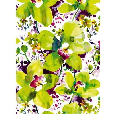 Φωτοταπετσαρία τοίχου Πολύχρωμα λουλούδια (FLOWERS) 184x254cm