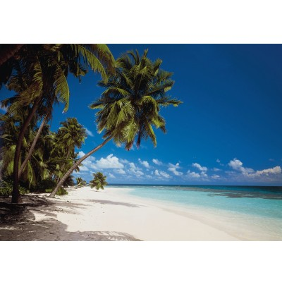 Φωτοταπετσαρία τοίχου Παραλία στις Μαλδίβες (beach Maldives) 388x270cm