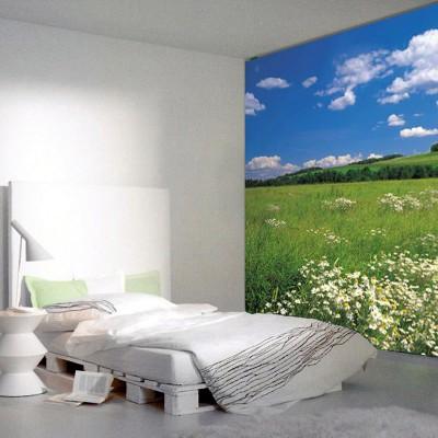 Φωτοταπετσαρία τοίχου Λιβάδι (φύση) 368x254cm