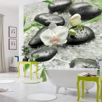 Φωτοταπετσαρία τοίχου Ορχιδέα (orchid) στη βροχή (flowers) 368x254cm