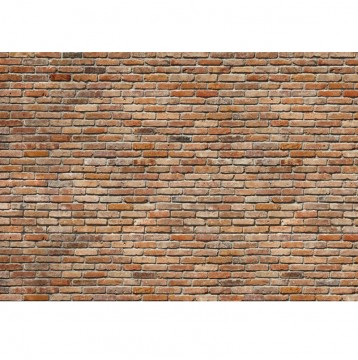 Φωτοταπετσαρία τοίχου Komar 8-741 Backstein Διακοσμητικό τούβλο 368x254cm