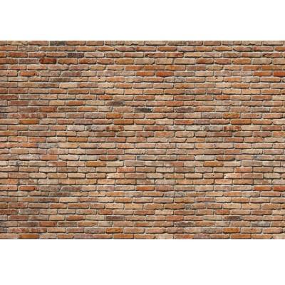 Φωτοταπετσαρία τοίχου Διακοσμητικό τούβλο 368x254cm