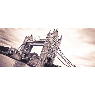 Φωτοταπετσαρία τοίχου Γέφυρα (bridge) 250x104cm