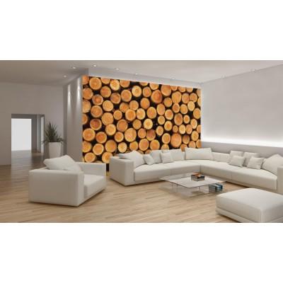 Φωτοταπετσαρία τοίχου DREWNO- Κορμοί Δέντρων 312x219