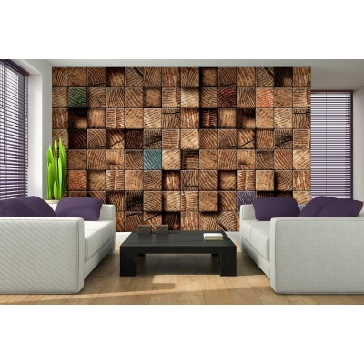 Φωτοταπετσαρία τοίχου WOOD 3D 312x219