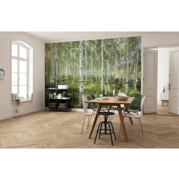 """Φωτοταπετσαρία τοίχου Komar 8-744  """"Sunny Day""""  368x254cm"""