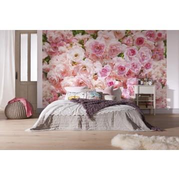 """Φωτοταπετσαρία τοίχου Φλοράλ Komar 8-937 """"Rosa """" 368x254cm"""