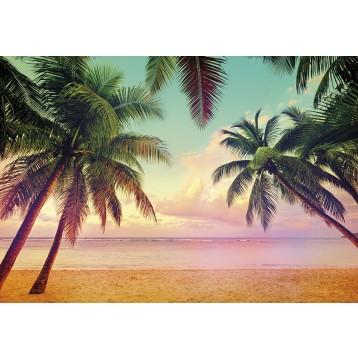 """Φωτοταπετσαρία τοίχου Komar 8-967  """"Miami """" 368x254cm"""