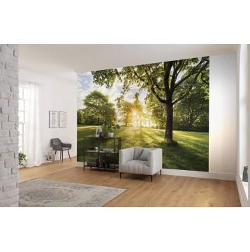 """Φωτοταπετσαρία τοίχου Komar 8-743 """"Golden Moment"""" 368x254cm"""