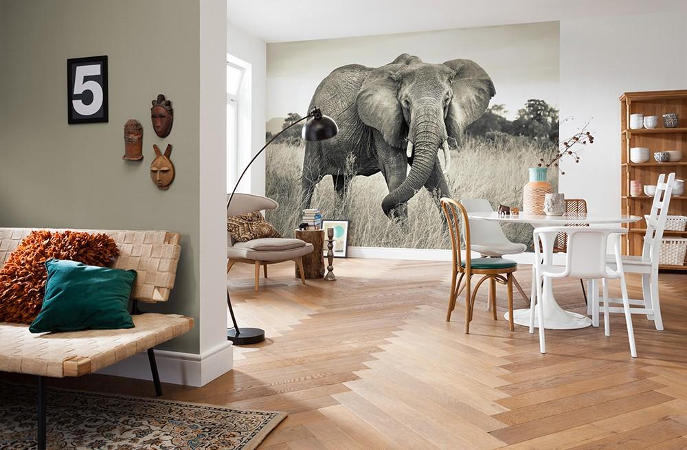"""Φωτοταπετσαρία τοίχου Komar XXL4-529  Non woven Vlies """"Elephant"""" 368x248cm"""