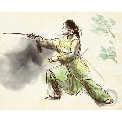 Ρόλερ - Ρολοκουρτίνα Σχέδιο Φενγκ Σουι - Ασία 8 Πολεμιστής