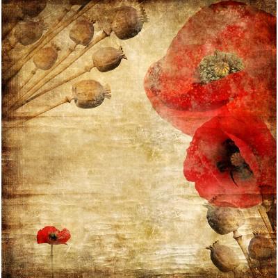 Ταπετσαρία Φύση - Λουλούδια - Floral 86 Παπαρούνες