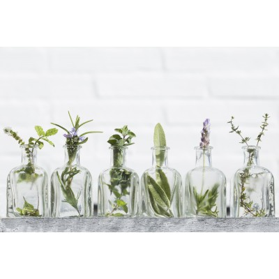 Ταπετσαρία Φύση - Λουλούδια - Floral 127