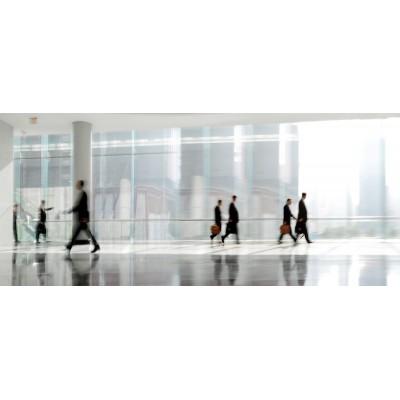 Ρόλερ - Ρολοκουρτίνα Σχέδιο Οικονομία - Τεχνολογία 22 Επαγγελματικοί στόχοι