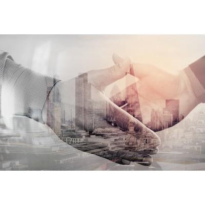 Ρόλερ - Ρολοκουρτίνα Σχέδιο Οικονομία - Τεχνολογία 15