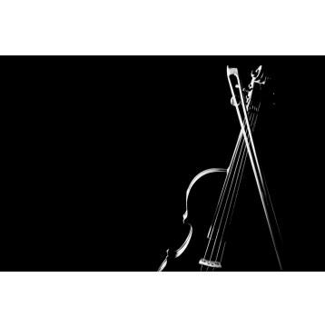 Ρόλερ - Ρολοκουρτίνα Σχέδιο Vintage - Μουσική 110