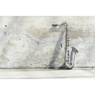 Ρόλερ - Ρολοκουρτίνα Σχέδιο Vintage - Μουσική 99