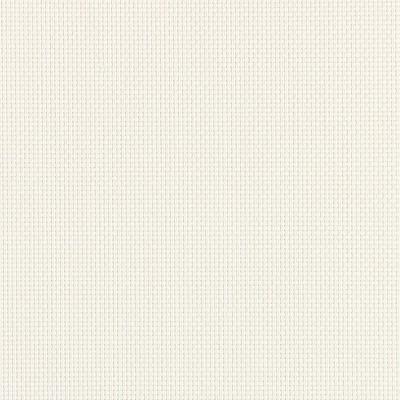 Ρόλερ Μερικής Συσκότισης Διάτρητο/Screen Λευκό Optim 16.9
